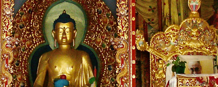 Course image for A History of Buddhist Philosophical Trends in India